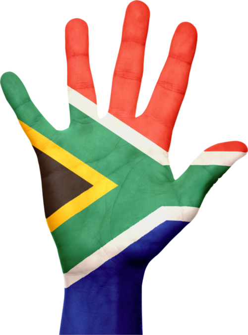 How many South Africans own and use cryptocurrencies?